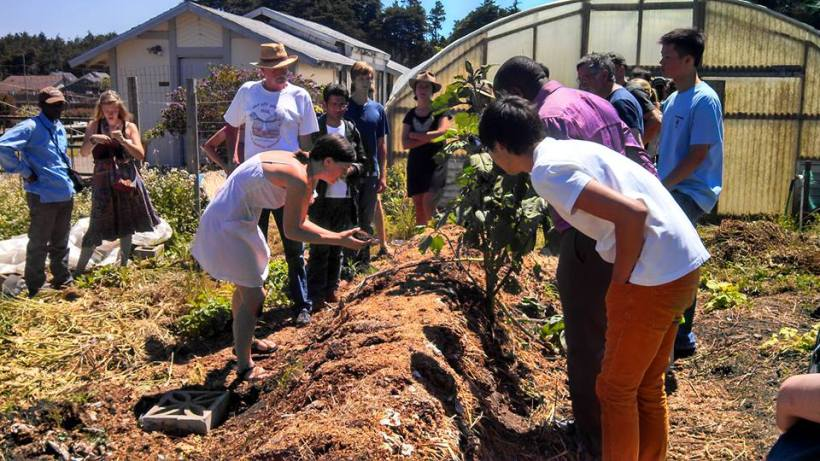 7 ways to access affordable fresh food in Mendocino County (and why