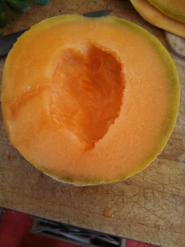 Cantaloupe from Covelo Organics