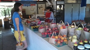 On the way to Boonville, we stopped at Gowan's Oak Tree farm stand aka fruit mecca