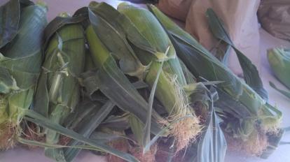 Corn on the cob!