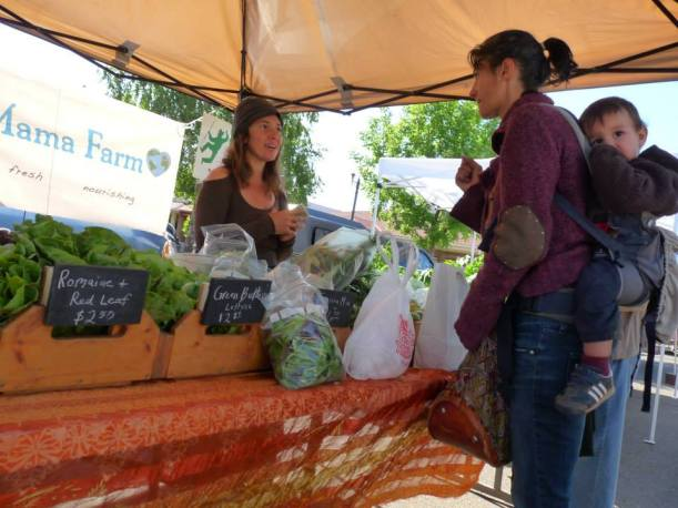 Shopping at the Ukiah Farmers' Market