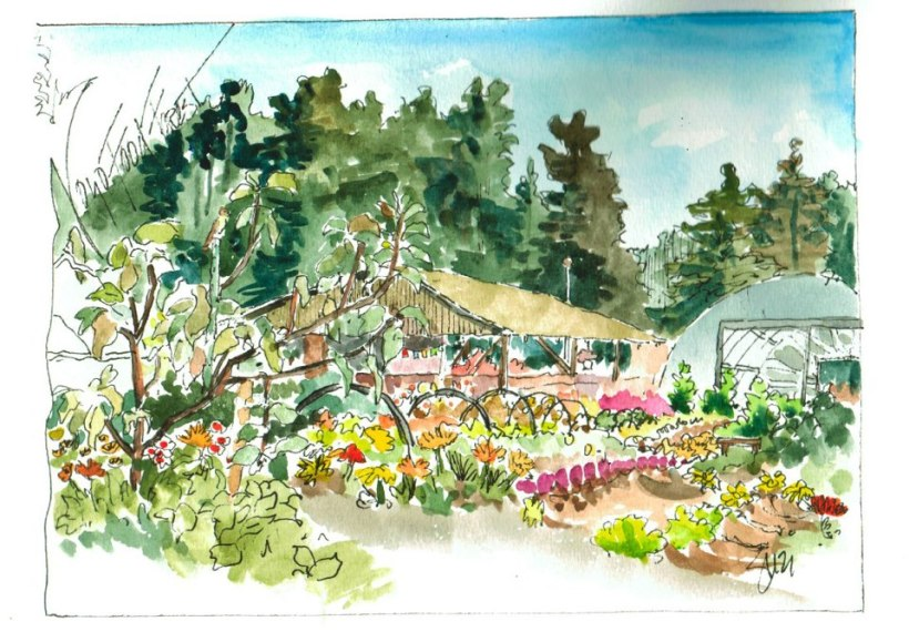 Watercolor painting of the Noyo Food Forest