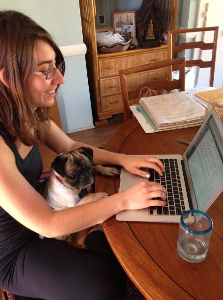 Lola the pug-blogger
